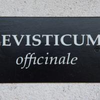 Levisticum1